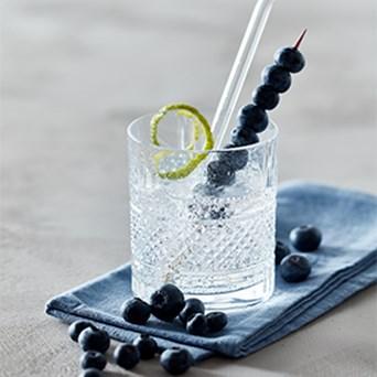 Lav Din Egen Gin 300X300